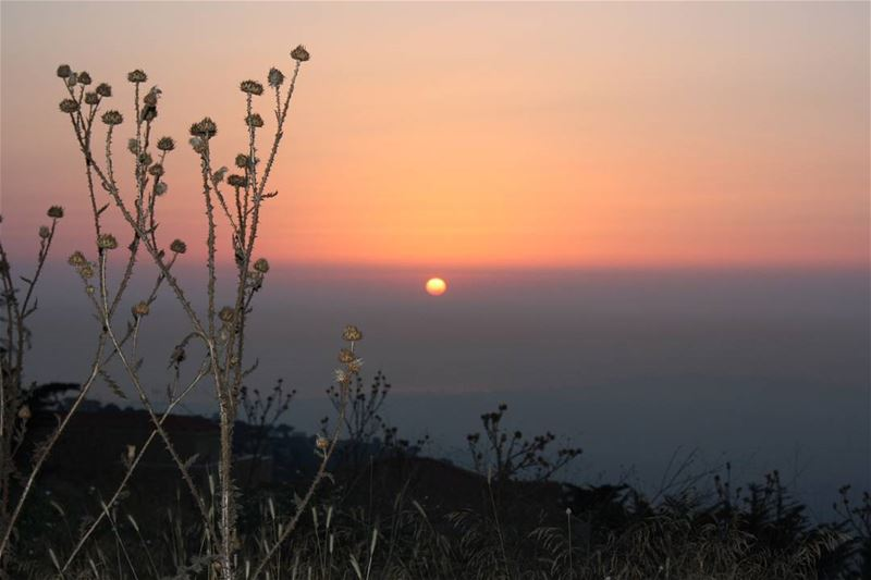 picoftheday world lebanon summer takemeback sunset perfect orange black...